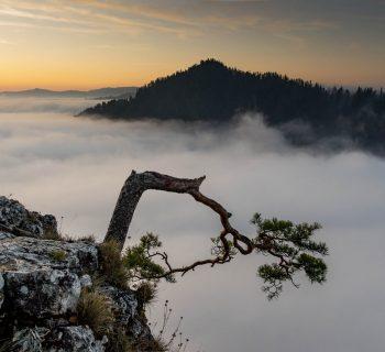 Jak zobaczyć najpiękniejsze szlaki i atrakcje w Pieninach w jeden weekend? Pełen plan!