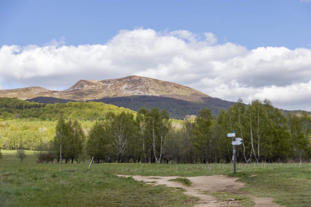 Widok na Tarnicę z Wołosatego